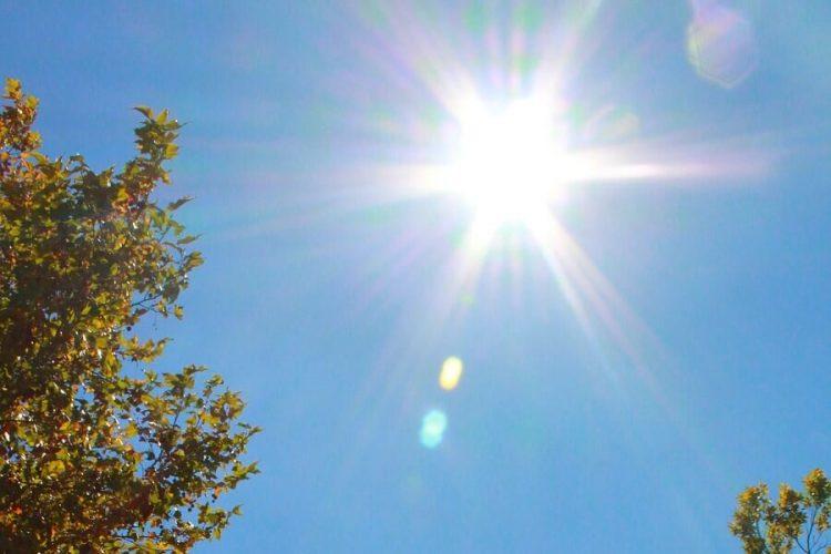 Tropische temperaturen: zo houd jij je huis koel!